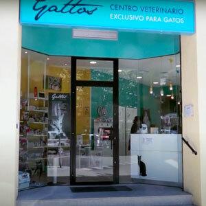 Foto de portada Hospital Gattos