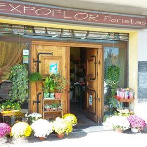 Foto de portada Expoflor Floristas