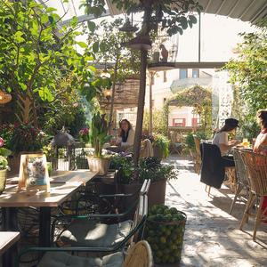 Foto de portada El Jardín de Salvador Bachiller