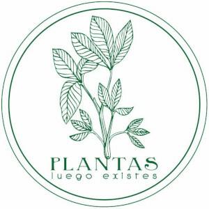 Foto de portada Plantas Luego Existes