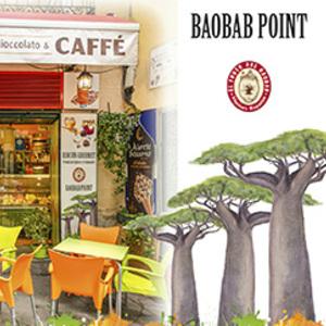 Foto de portada El Fruto Del Baobab