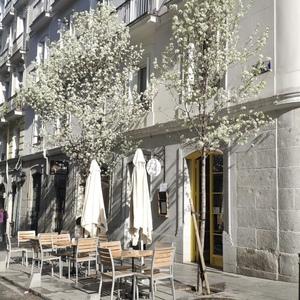 Foto de portada Masticar comedor + cafe