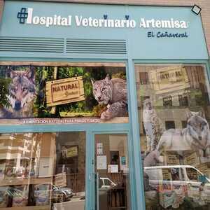 Foto de portada Hospital Veterinario ARtemisa