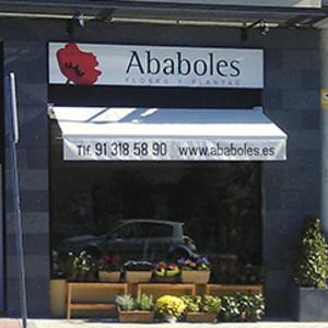 Foto de portada Ababoles