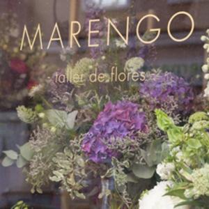 Foto de portada Marengo Flores
