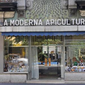Foto de portada La Moderna Apicultura